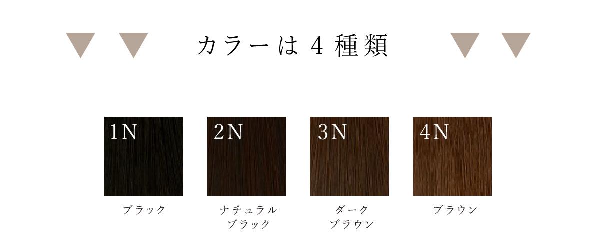 カラーは4種類
