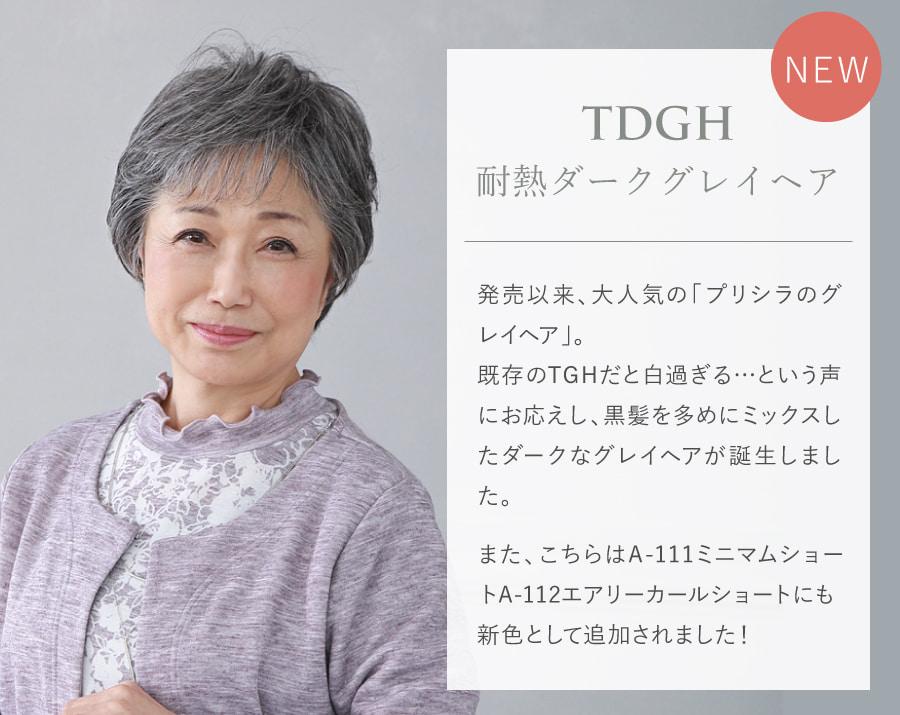 新色TDGH 耐熱ダークグレイヘア