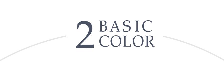 2色のベーシックカラー